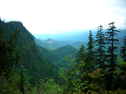 View of western slope of Cascade Range mountains.