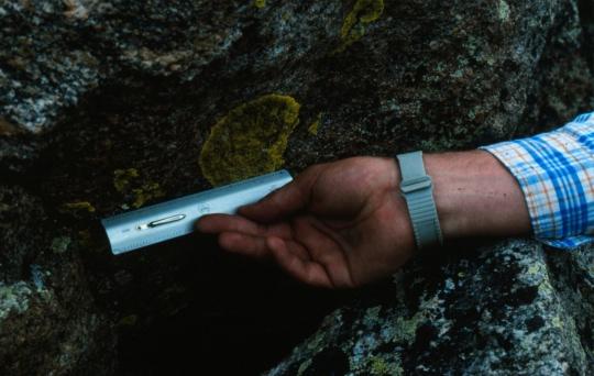 Lichen measurement
